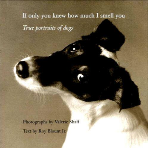 Image for If Only You Knew How Much I Smell You: True Portraits of Dogs