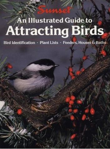 Image for An Illustrated Guide to Attracting Birds