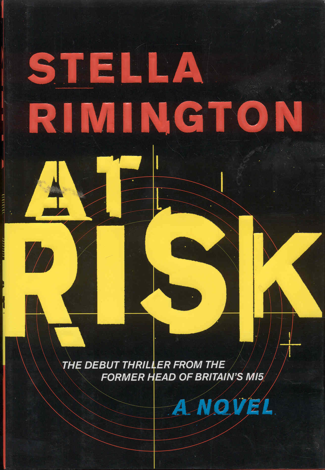 Image for At Risk