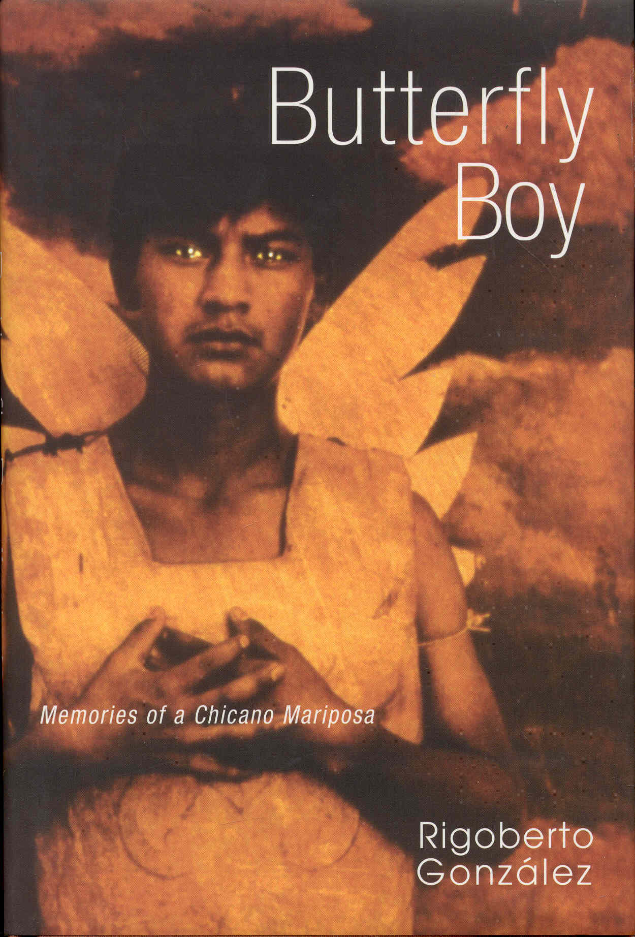 Image for Butterfly Boy: Memories of a Chicano Mariposa