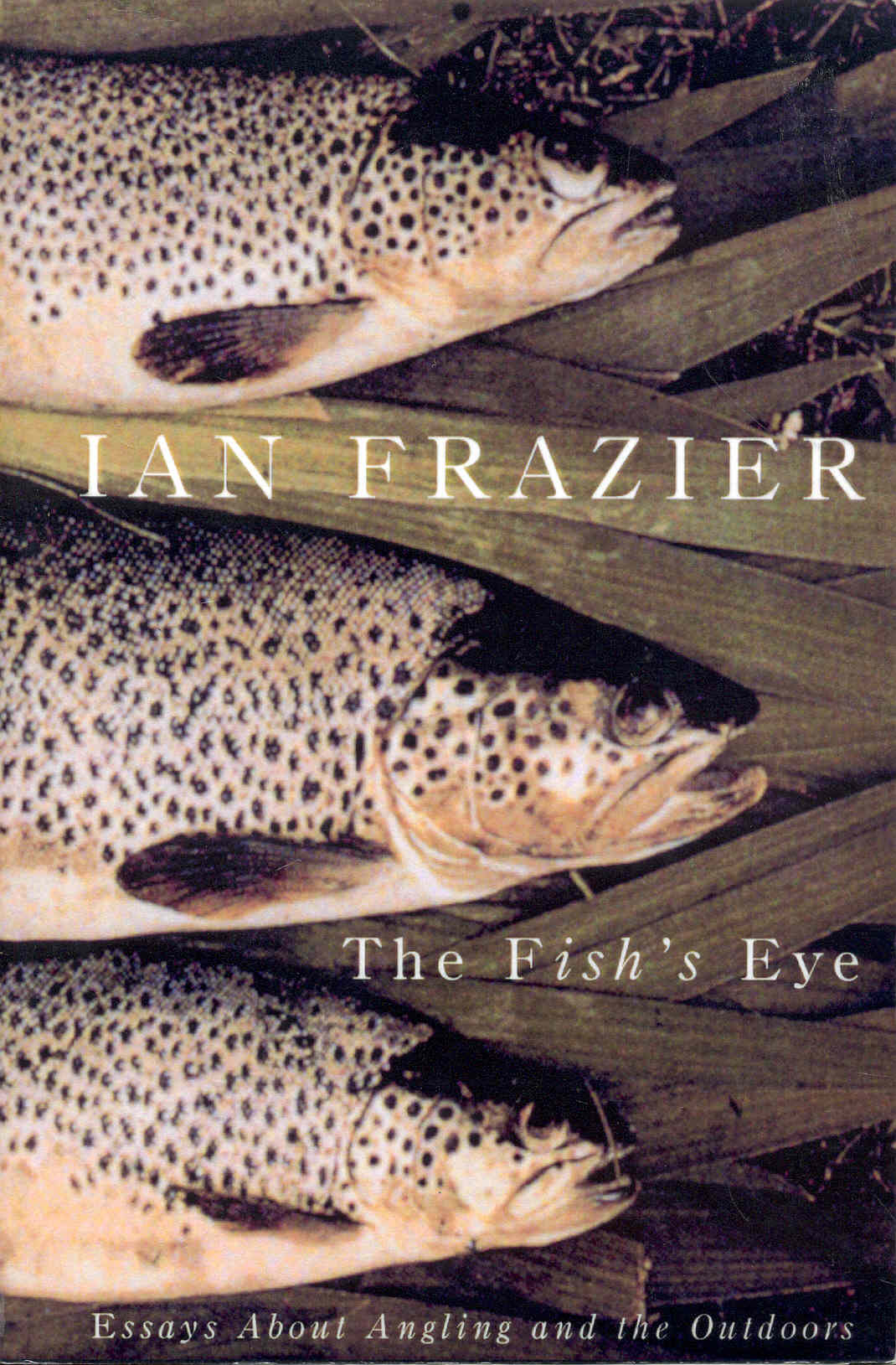 Image for The Fish's Eye: Essays About Angling and the Great Outdoors