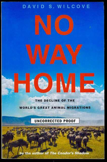 Image for No Way Home: The Decline of the World's Great Animal Migrations