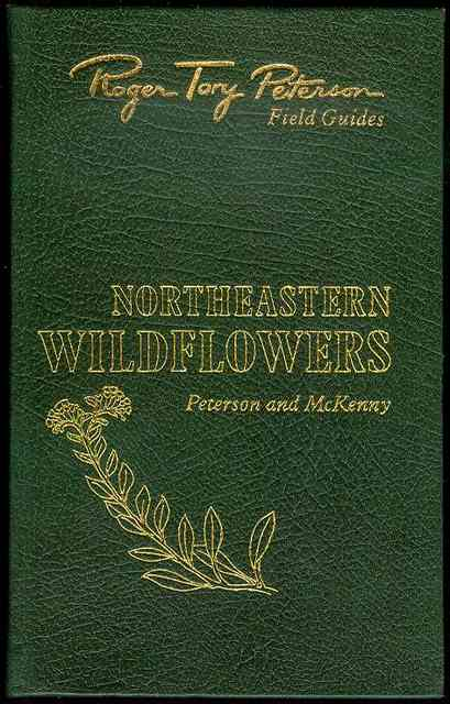Image for Northeastern Wildflowers (A Field Guide to Wildflowers)
