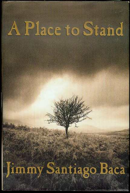 Image for A Place to Stand: The Making of a Poet
