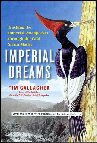 Image for Imperial Dreams: Tracking the Imperial Woodpecker Through the Wild Sierra Madre
