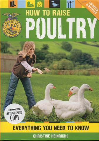 Image for How to Raise Poultry: Everything You Need to Know