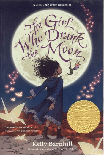 Image for The Girl Who Drank the Moon