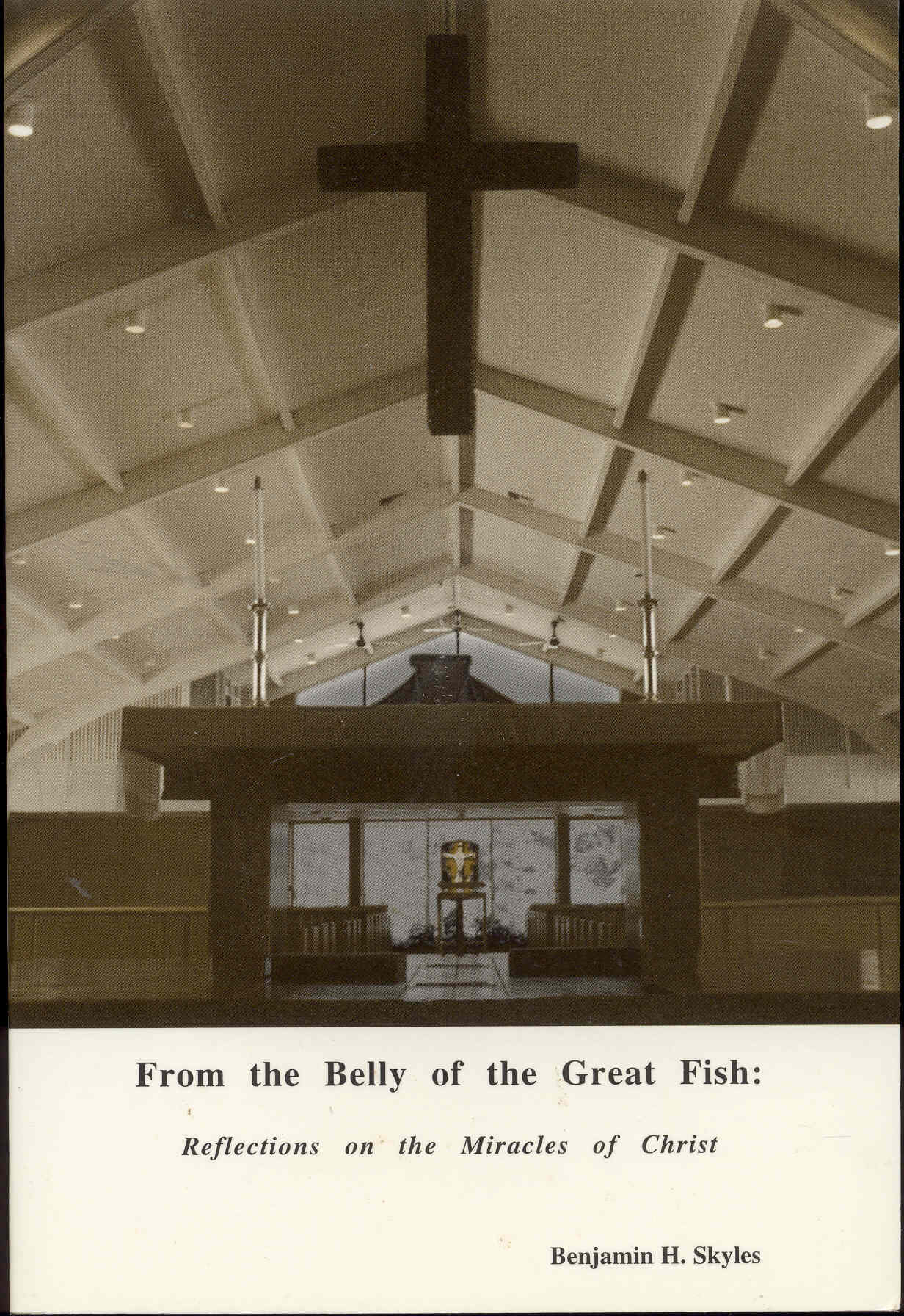 Image for From the Belly of the Great Fish: Reflections on the Miracles of Christ