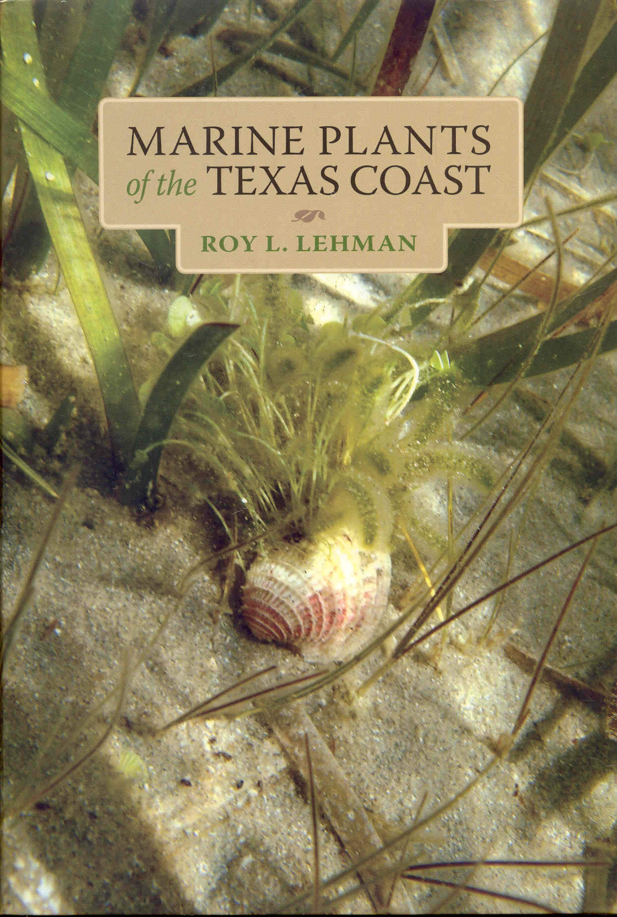 Image for Marine Plants of the Texas Coast