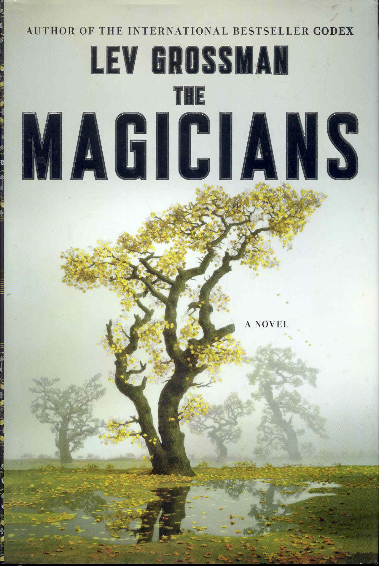 Image for The Magicians
