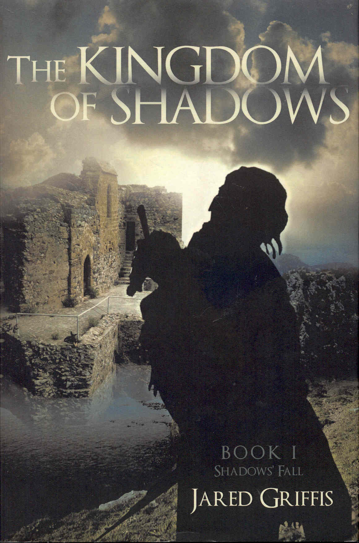 Image for The Kingdom of Shadows (Shadows' Fall, Book 1)