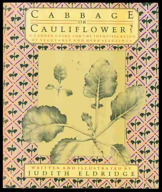 Image for Cabbage or Cauliflower? A Garden Guide for the Identification of Vegetable and Herb Seedlings
