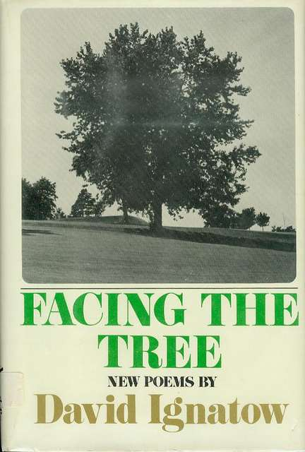 Image for Facing the Tree